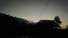 IMG_20160528_173814367 (Lipe_Matheus) Tags: park ibirapuera