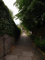 (Stitchinscience) Tags: london perspective hedge highgate passage