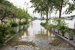Les quais, inonds. (mzagerp) Tags: paris seine de juin flood rivire pont quai cru dorsay fiver zouave 2016 lalma