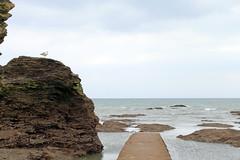 IMG_3396 (-Morgane-) Tags: ocean sea france nature landscape outdoors photography seaside sand rocks sion vende