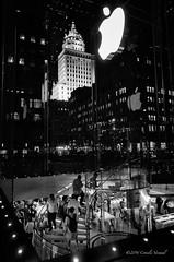 Shopping Moles (CVerwaal) Tags: blackandwhite usa ny newyork night centralpark applestore shops ricohgr crownbuilding
