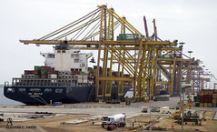 _DSC0127 (Alfonso C. Orive) Tags: tren puerto container contenedores gruas puertoseco alfonsocorive