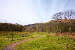 Scotland Day Three (Crazyideas95) Tags: trip outside outdoors scotland highlands path walk sunny trail loch lomond luss