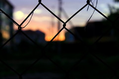 blurry (asronas) Tags: sunset lattice