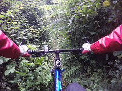 G0115109 (Photopedaler) Tags: pov path mountainbiking singletrack bicycleriding gopro cornishcycling