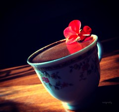 coffee? #iPhone #coffee (.natia.) Tags: red flower reflection cup coffee yummy colorful warm mood great delicious iphoneography natigraphy