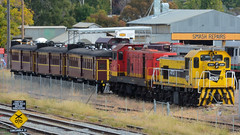 Lachlan Valley Locos (JungleJack22) Tags: trip railroad station electric set train tren pull la die power carriage diesel authority traction performance australian platform engine eisenbahn rail railway loco australia pickup run el class line southern 49 valley transit rails locomotive ssr load treno engineer freight appliance grunt 47 lachlan bogie kw locos ballast lvr livery  4906 shorthaul  gunzel trane stabled 4701 gunzelling  gunzeller