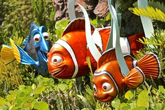 Nemo (jordanhall81) Tags: world ocean park blue sea lake fish garden way lost amusement orlando epcot finding nemo florida clown sydney australian center disney resort wallaby vista theme p wdw walt 42 dory sherman marlin tang buena eac