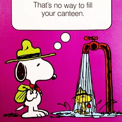 Fill 'er up! #snoopy #woodstock #peanuts #beaglescout #camping #collectpeanuts #canteen #snoopygrams #snoopyfan #snoopylove #snoopycollection #ilovesnoopy (collectpeanuts) Tags: brown peanuts charlie snoopy collectpeanuts