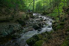 MacIntosh Brook Trail (scott_clark) Tags: bridge canada green water creek forest river dark walking rocks stream novascotia hiking walk hike trail shade brook rapid hardwood freshwater