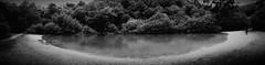 20160619_190557 (milana_kovalonoka) Tags: wood blackandwhite water pond humberbridge eastyorkshire kingstonuponhull humberside humberpark