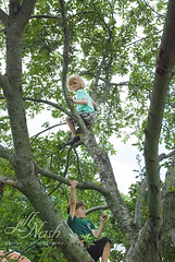 Climbing high (grilljam) Tags: summer ewan cato treeclimbing 65yrs june2016 swangofarm