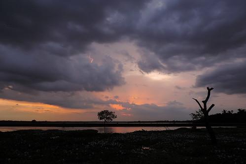 Weerawila Lake - Mixing Clouds