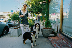 Beauty and the Beauties O&E (louiseven) Tags: film dogs beauty smiles portra nikonf3 aussies weho portra400 shootfilm