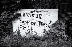 wenn ein FCH-Ghettofan trumt (georgsfoto) Tags: blackandwhite bw monochrome graffiti graffito rodinal expired hartziv rostock hansa heimat shotonfilm fujineopan400 fch schwarzweis rodinal1100 semistanddevelopment crappynegativescan minoxml developedin sofortrente ghettofans