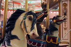 Coney Island's Historic B&B Carousell (Kim Lofgren Photography) Tags: nyc carnival 1920s horse newyork brooklyn vintage coneyisland ride landmark carousel historic boardwalk amusementpark lunapark 1906 merrygoround carouselhorse bbcarousell charlescarmel