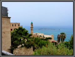Old Jaffa (Yafo), Israel (Dora-A) Tags: ocean trees light sea sky flower color green tower nature beautiful landscape photography israel daylight telaviv spring colorful mediterranean day view bright minaret muslim country north picture middleeast galilee scene mosque jaffa panasonic foliage holyland hdr mideast blooming yafo flourishing  doraa albahr dmcfz150 northernkingdomofisrael