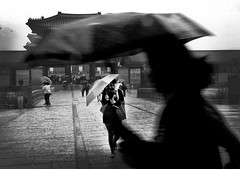 Wet and Windy by Henry Wong (Urban Picnic Street Photography) Tags: street wet photography photo windy henry wong