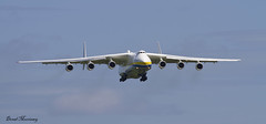 Antonov An-225 approach to Shannon (birrlad) Tags: ireland 6 airplane airport clare aircraft aviation airplanes cargo landing shannon engines airline co approach airlines russian runway biggest airliner freighter antonov an225 mriya