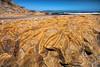 Drakes Beach (Jackpicks) Tags: california seascape beach point coastal national pointreyes seashore drakes reyes northerncaliforniacoast mygearandme californiacoastalimages
