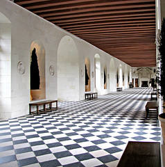 Château de Chenonceau (Colorado Sands) Tags: châteaudechenonceau france interior château french loirevalley landmark castle hall monumenthistorique historic europe francia european touristattraction checkerboardflooring checkerboardfloor patterns lines squares geometrical designs sandraleidholdt