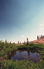 Cecret Pool ( RAINYNEPTUNUS ) Tags: lake mountains film analog forest utah pond view grove alpine vista patch analogphotography littlecottonwoodcanyon filmphotography