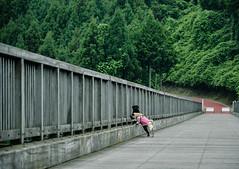 何が見えるの? (e_haya) Tags: nikon pug 風景 橋 nikond7000