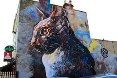 2013 Upfest Bristol - Graffiti Art by Graffiti Artist: C215    {Explore - 29/07/2013 - Highest Position 108} (Andy_Hartley) Tags: uk england urban streetart bristol graffiti mural europe wallart urbanart explore spraycan grafittiart grafittiartist flickrexplore streatart upfest 2013 c215 urbanpaintfestival mygearandme