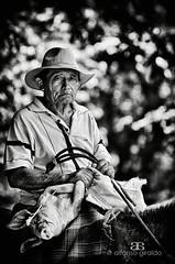 Con el Marrano (Alfonso Giraldo) Tags: horse caballo pig llanos cerdo marrano llanero llanosorientales
