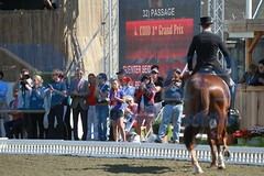 IMG_2013 (RPG PHOTOGRAPHY) Tags: coral reef cdi seidel hickstead 2013 guenter wylea