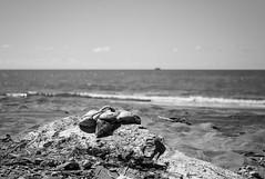 Smashed coconut. (Digital-Fragrance) Tags: camera new leica people bw white black classic beach digital 35mm lens photography photo noir shot image shots photograph ii m8 12 et blanc asph nokton caledonia voigtlnder elie fragrance f12 aspherical bescont