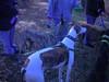 WorldsEnd11-20-2011021