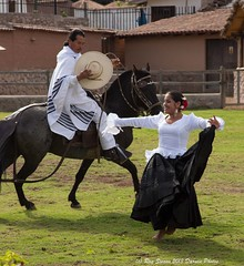 Peruvians of the High Andes (Ray Swann) Tags: school people music peru field retail america children high workers farmers south pipes dancer staff valley sacred andes rider selling hors peruvians