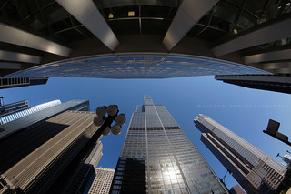 Willis Tower ~ Chicago