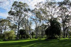 Many Shades of Green (Jocey K) Tags: trees grass shadows southaustralia barossavalley austraila tanuda lehmannwinery