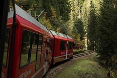 Rhtische Bahn RhB Triebzug ABe 8/12 3503 Allegra mit Taufname Carlo Janka unterwegs auf der Arosabahn im Schanfigg im Kanton Graubnden - Grischun in der Schweiz (chrchr_75) Tags: oktober train de tren schweiz switzerland suisse swiss herbst eisenbahn rail railway zug locomotive christoph svizzera bahn treno schweizer chemin centralstation fer locomotora tog 1310 juna allegra lokomotive lok ferrovia rhb bergbahn spoorweg rhtische suissa graubnden locomotiva lokomotiv ferroviaria  locomotief kanton chrigu  stadler rautatie schmalspur  2013 grischun bahnen zoug trainen retica viafier triebzug  chrchr hurni kantongraubnden chrchr75 chriguhurni meterspur chriguhurnibluemailch oktober2013 hurni131022 albumbahnrhballegra albumbahnrhtischebahnrhb