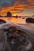 The Sea Life Congress (Willie Huang Photo) Tags: ocean sf city sunset seascape beach nature landscape coast sand waves pacific starfish scenic crab stack sutrobaths lowtide