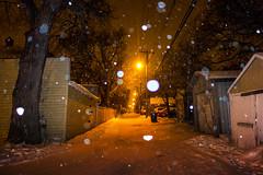 Back Lane (bryanscott) Tags: winter snow winnipeg manitoba