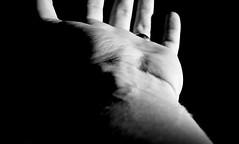 hand / 5 (ondey) Tags: light shadow bw white black detail leather dark hands hand skin body finger touch fingers palm human gesture tma gestures ruka gesto čb černá bílá stín dotyk světlo prst gesta ruce dlaň prsty kůže lidské černobílá černobílé tělo člověk hmat pokožka