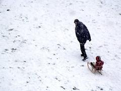 Winter moment 2 (vegeta25) Tags: family winter snow playing nature weather fuji play joy fujifilm snowing wintermoment myfuji s3200 52weeksthe2014edition week52014 weekstartingwednesdayjanuary292014