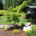 """Vancouver and ridgefield homes <a style=""""margin-left:10px; font-size:0.8em;"""" href=""""http://www.flickr.com/photos/117326093@N05/12824079985/"""" target=""""_blank"""">@flickr</a>"""