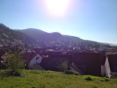 Uitzicht over Dossenheim