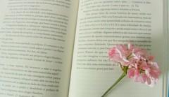 Flor (Julia Pacini) Tags: flores flower cute vintage books livros colar pendant pingente