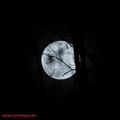 Full Moon at Percy Warner Park - February 3, 2015 (mikerhicks) Tags: usa geotagged unitedstates nashville hiking tennessee fullmoon warnerparks vaughnsgap canon7dmkii iroquoismeadows sigma18250mmf3563dcmacrooshsm geo:lat=3606326333 geo:lon=8687971500