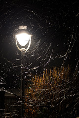 Raindrops in the Night ... (he_boden) Tags: rain night dark drops nacht lantern regen dunkel tropfen leuchte