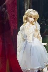 Dollpa 32 Tokyo (gryfeathr) Tags: tokyo sd bjd volks 32 dollpa