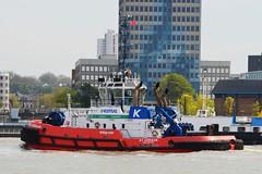 RT Adriaan (1) @ Woolwich Reach 06-05-16 (AJBC_1) Tags: uk england london boat ship unitedkingdom vessel tugboat tug hybrid riverthames damen eastlondon nikond3200 northwoolwich newham londonboroughofnewham etug kotug ukshipping rtadriaan dlrblog damenshipyardsgroup ajc shipsinpictures hybridrototug damonart8032 kotugeuropeanharbourtowage kotugsmittowage