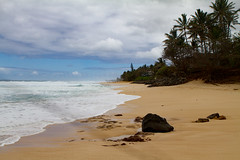 IMG_4089 (The.Rohit) Tags: beach hawaii coast sand waves oahu shore aloha banzaipipeline