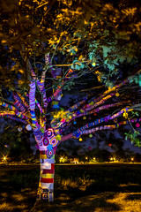 """Yarn-bombed"" (-Mark Bean-) Tags: light color colour tree wool nature colors field painting lite countryside wooden saturated oak long exposure branch colours nocturnal natural branches yarn saturation common foilage multicolor bombed hertfordshire redbourn multicolour 2016 noctography"