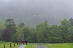 A walk in the rain (beeldmark) Tags: ireland mountain mountains nature berg rain forest landscape natuur kerry killarney bergen ie bos  regen landschap mensen ierland ire cillairne